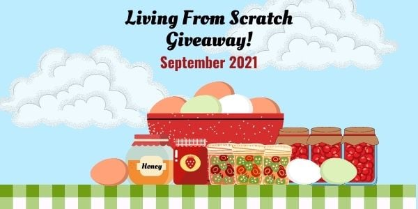 Living from Scratch image