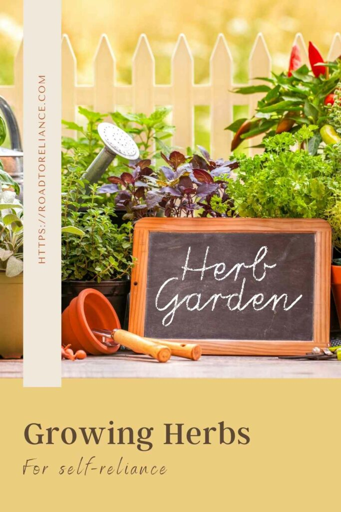 Ready to start growing herbs on your property? Whether you grow them directly in a garden bed or in containers, this guide will teach you everything you need to know. Make sure you grab your free EBook too!