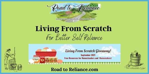 Living from scratch featured image