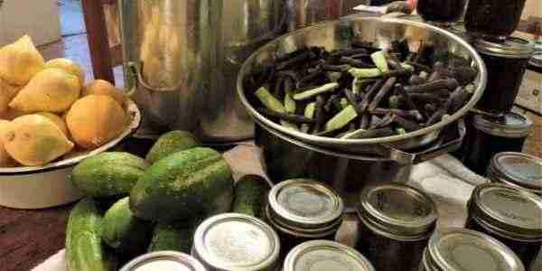 A self-reliant kitchen