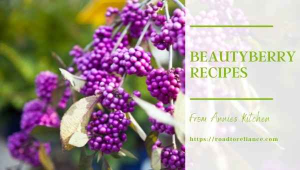 Beautyberry Recipes featured image