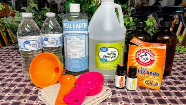 Natural Homemade Cleaners - Supplies