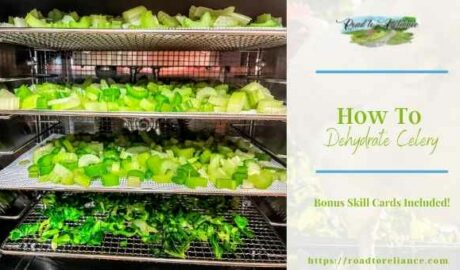 dehydrate celery featured image