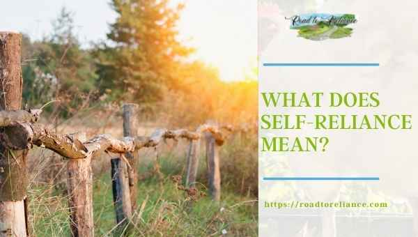 What Does Self-Reliance Mean? Featured Image